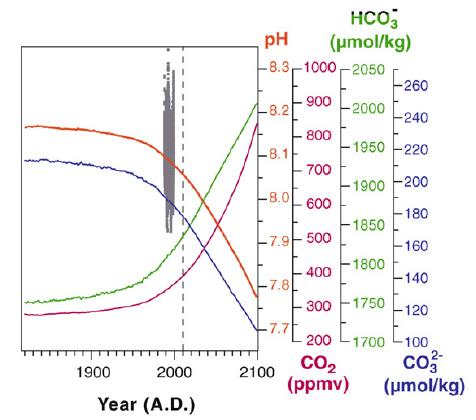 Variation du pH océanique et de la concentration du CO2 atmosphérique entre 1800 et aujourd'hui