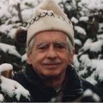 Cliché, Patrice Laroche (Le Soleil), 26 décembre 2001. Source : http://lehamelin.sittel.ca/