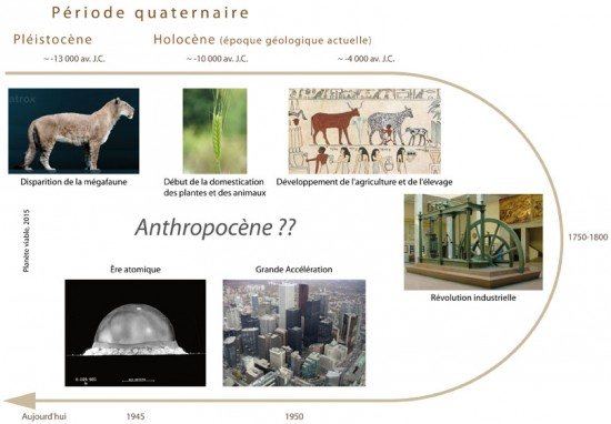 Début de l'Anthropocène