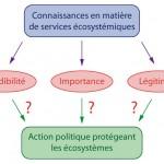 Légitimité - Processus décisionnel