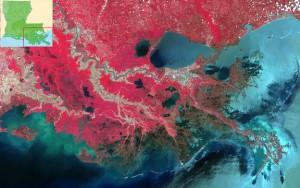Marais maritime - Delta de la rivière Mississipi