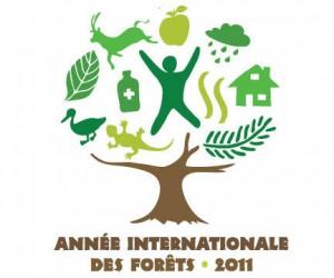 Année intenationale des forêts 2011