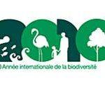 Logo Année internationale de la biodiversité