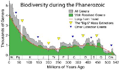 Variations du nombre de genres d'animaux marins au cours des 500 derniers millions d'années