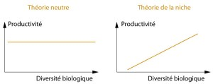 Theories Neutre-Niche