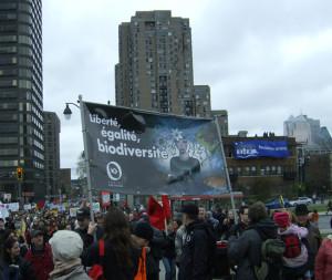 Manifestation environnementaliste