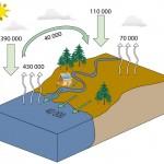 Cycle de l'eau simplifié