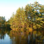 Protection des écosystèmes